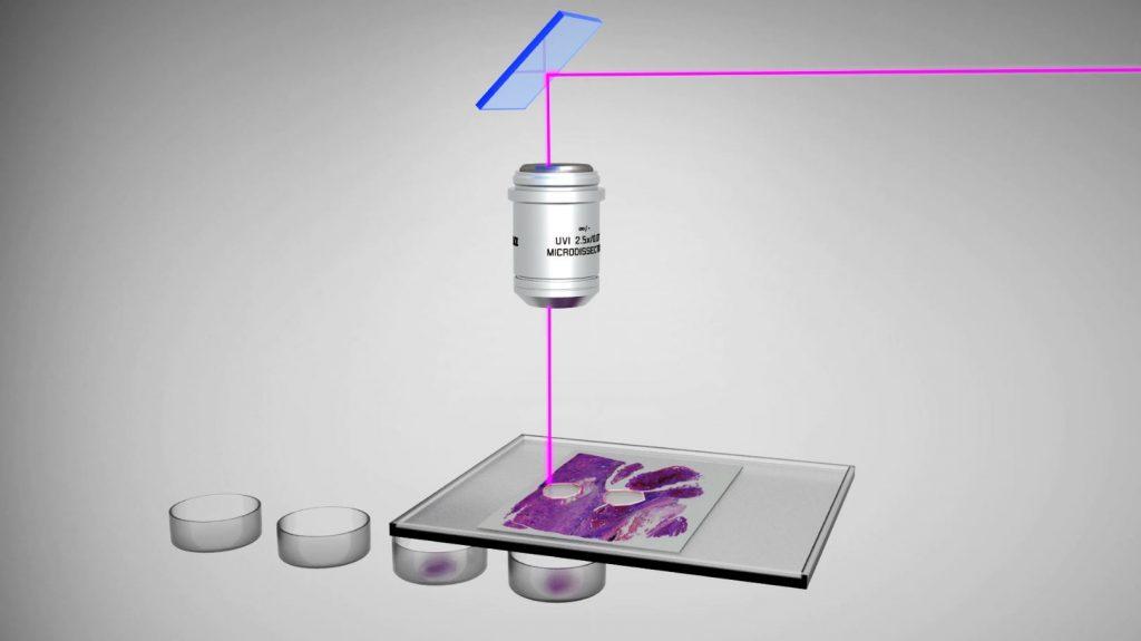 Der UV-Laser wird durch das Objektiv auf die Probe gelenkt. Der Laser wird dabei durch eine Optik gesteuert (Leica-spezifisch). Der Laser schneidet dann die Probe aus. Diese fällt gemäß Gravität in ein Auffanggefäß.