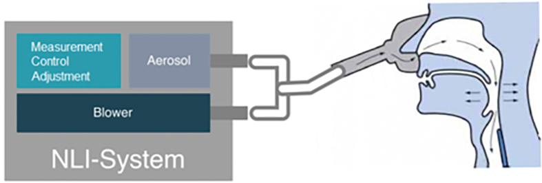 Grafik nasale Langzeit-Inhalation